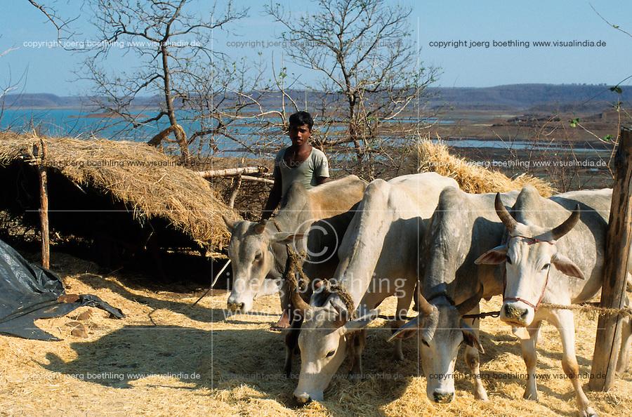 INDIA Madhya Pradesh Bargi, tribal farmer near reservoir of Bargi dam at Narmada river, many farmer have lost their arable land and fight for rehabilitation until today / INDIEN, Adivasi Farmer am Stausee des Bargi Staudamm am Narmada Fluss, viele Ureinwohner haben ihr Land verloren