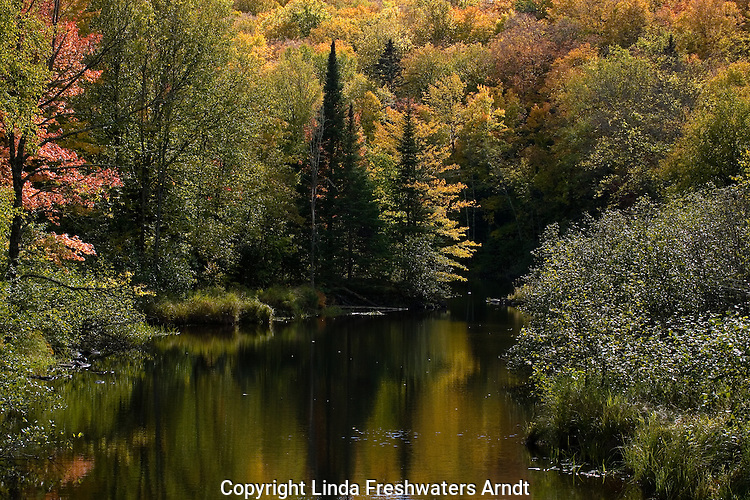 River in Chequamegon National Forest.  Fall.  Wisconsin.