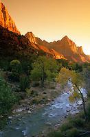 Watchman over Zion - Utah - Zion National Park - Virgin River