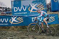 VANTHOURENHOUT Dieter (BEL/Marlux-Bingoal)<br /> <br /> GP Sven Nys (BEL) 2019<br /> DVV Trofee<br /> ©kramon