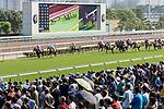 Jockeys riding their horses during Hong Kong Racing at Sha Tin Racecourse on October 01, 2018 in Hong Kong, Hong Kong. Photo by Yu Chun Christopher Wong / Power Sport Images