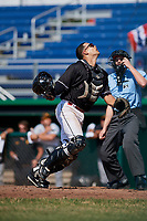 Batavia Muckdogs catcher Igor Baez (29) tracks a pop up in front of home plate umpire Tyler Witte during a game against the West Virginia Black Bears on July 1, 2018 at Dwyer Stadium in Batavia, New York.  Batavia defeated West Virginia 8-4.  (Mike Janes/Four Seam Images)