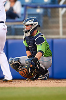 Lynchburg Hillcats catcher Logan Ice (20) during a game against the Salem Red Sox on May 10, 2018 at Haley Toyota Field in Salem, Virginia.  Lynchburg defeated Salem 11-5.  (Mike Janes/Four Seam Images)