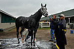 25 April 2010: Conveyance gets a bath outside Barn 33 Monday morning at Churchill Downs in Louisville, Kentucky.