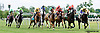 Mythical Hero winning at Delaware Park racetrack on 6/21/14