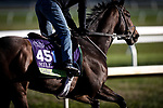 Casa Creed, trained by William I. Mott, exercises in preparation for the Breeders' Cup Mile at Keeneland 11.03.20.