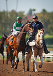 """September 26, 2015: Swipe in the post parade for the Breeders' Cup """"Win and You're In"""" FrontRunner Stakes at Santa Anita Park in Arcadia, California. Zoe Metz/ESW/CSM"""