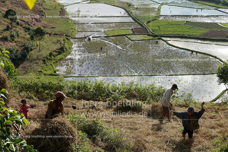 MADAGASCAR, highlands, rice cultivation, rain flooded paddy fields / MADAGASKAR, bewaesserte Reisfelder im Hochland bei Ambositra