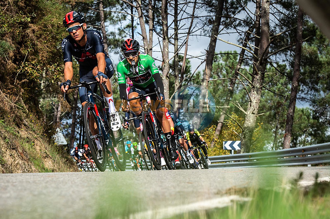 The peloton including Richard Carapaz (ECU) Ineos Grenadiers wearing the Green Jersey descends during Stage 15 of the Vuelta Espana 2020, running 230.8km from Mos to Puebla de Sanabria, Spain. 5th November 2020. <br /> Picture: Unipublic/Charly Lopez | Cyclefile<br /> <br /> All photos usage must carry mandatory copyright credit (© Cyclefile | Unipublic/Charly Lopez)