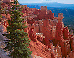 Bryce Canyon National Park, UT<br /> Hoodoos and pinnacles of Agua Canyon