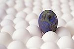 Egg Concept Images