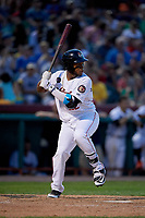Tri-City ValleyCats first baseman Luis Encarnacion (22) at bat during a game against the Vermont Lake Monsters on June 16, 2018 at Joseph L. Bruno Stadium in Troy, New York.  Vermont defeated Tri-City 6-2.  (Mike Janes/Four Seam Images)