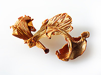 Dried Chanterelle mushrooms