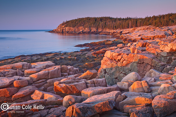 Sunrise view of Otter Cliffs from Thunder Hole in Acadia National Park, Downeast, ME, USA