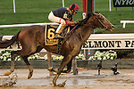 "October 3, 2015:  Tonalist with John Velazquez win the Grade I Jockey Club Gold Cup, a ""Win & You're In"" event, for 3-year olds & up, going 1 1/4 mile at Belmont Park.  Trainer Christophe Clement. Owner Robert Evans. Sue Kawczynski/ESW/CSM"