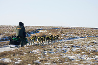 Jeff King on snowless tundra just up from the Unalakleet river nearing Unalakleet