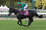 October 02, 2016, Chantilly, FRANCE - Harzand with Patrick Joseph Smullen up at the Qatar Prix de'l Arc de Triomphe (Gr. I) at  Chantilly Race Course  [Copyright (c) Sandra Scherning/Eclipse Sportswire)