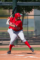 Los Angeles Angels center fielder Nonie Williams (27) at bat during an Extended Spring Training game against the Chicago Cubs at Sloan Park on April 14, 2018 in Mesa, Arizona. (Zachary Lucy/Four Seam Images)