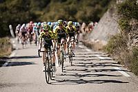 Mikel Nieve (ESP/Mitchelton-Scott)<br /> <br /> Stage 6: Peynier to Brignoles (176km)<br /> 77th Paris - Nice 2019 (2.UWT)<br /> <br /> ©kramon