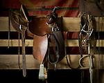 Horse saddle near Abbeville, Miss. on Wednesday, December 9, 2009.