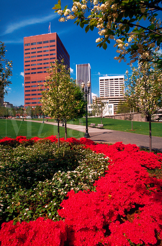 Waterfront park with flowers and trees, buildings in background,Portland, Oregon