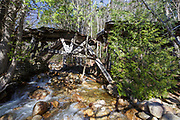 The historic Trestle No. 16 which crosses Black Brook along the abandoned East Branch & Lincoln Railroad (1893-1948) in the Pemigewasset Wilderness of Lincoln, New Hampshire. This image shows how the trestle looked shortly after heavy rain and strong winds from an October 29-30, 2017 storm. This section of trestle that crosses the brook looks to have shifted. And more of the stone abutment on the right (out of view behind the tree) has washed away.