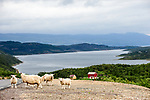 Stunning scenery during Stage 2 of the 2018 Artic Race of Norway, running 195km from Tana to Kjøllefjord, Norway. 17th August 2018. <br /> <br /> Picture: ASO/Gautier Demouveaux | Cyclefile<br /> All photos usage must carry mandatory copyright credit (© Cyclefile | ASO/Gautier Demouveaux)