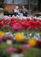 Pictured: Two woman enjoy the sunshine by an array of colourful tulips at the Singleton Park Botanic Garden in Swansea, south Wales, UK. Friday 06 May 2016<br /> Re: Warm and sunny weather has been forecast for most of the UK.