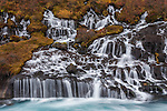 Hraunfossar (Borgarfjörður, Western Iceland) is a series of waterfalls formed by rivulets streaming over a distance of about 900 metres out of the Hallmundarhraun, a lava field which flowed from an eruption of one of the volcanoes lying under the glacier Langjökull. The waterfalls pour into the Hvítá river from ledges of less porous rock in the lava. The name hraun comes from the Icelandic word for lava. Iceland.