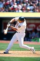 OAKLAND, CA:  Jason Giambi of the Oakland Athletics in action at the Oakland Coliseum in Oakland, California in 2001. (Photo by Brad Mangin)