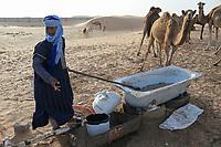 MAURETANIA, Nouakchott, desert on the outskirts, moor nomads with camel herd for milk sale / MAURETANIEN, Nuakschott, Wüste am Stadtrand, Mauren mit Kamelherde für Milchverkauf