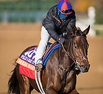 Mean Mary, trained by H. Graham Motion, exercises in preparation for the Breeders' Cup Filly & Mare Turf at Keeneland 11.03.20.