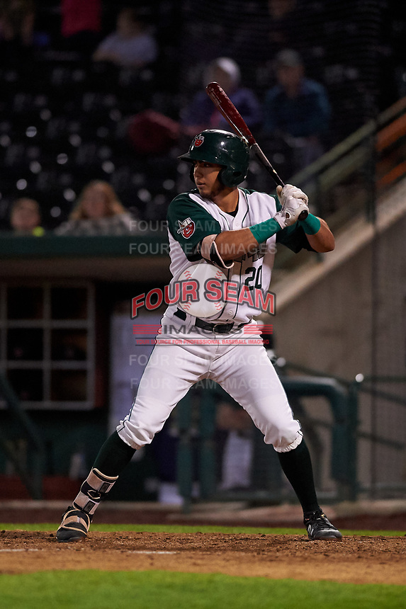 Fort Wayne TinCaps right fielder Agustin Ruiz (20) during a Midwest League game against the Quad Cities River Bandits at Parkview Field on May 3, 2019 in Fort Wayne, Indiana. Quad Cities defeated Fort Wayne 4-3. (Zachary Lucy/Four Seam Images)