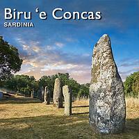 Menhir Standing Stones of Biru 'e Concas - Pictures &  Images -