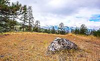 Fine Art Landscape Photograph of a speckled rock at the Garnet Fire Interpretative site in Penticton, British Columbia Canada.