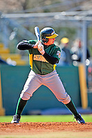19 April 2009: University of Vermont Catamounts' catcher Mike McCarthy, a Freshman from Wallingford, CT, at bat against the University at Albany Great Danes at Historic Centennial Field in Burlington, Vermont. The Great Danes defeated the Catamounts 9-4 in the second game of a double-header. Sadly, the Catamounts are playing their last season of baseball, as the program has been marked for elimination due to budgetary constraints on the University. Mandatory Photo Credit: Ed Wolfstein Photo