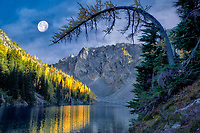 Blue Lake with Tamarack or larch trees reflected in fall color and moon. North Cascades National Park. Washington. moon has been added