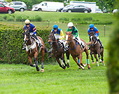 Arch Hero on the lead with Cat Walkin (blaze) and Eye Said Scat Cat (blue and yellow) heading downhill in the ViceMead Plate.