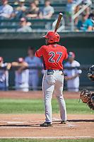 Johan Sala (27) of the Orem Owlz at bat against the Idaho Falls Chukars at Melaleuca Field on July 14, 2019 in Idaho Falls, Idaho. The Owlz defeated the Chukars 6-2. (Stephen Smith/Four Seam Images)