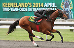 April 03, 2014: Hip 124 Temple City - Las Malvinas consigned by Eddie Woods worked 1/4 in 20:3.  Candice Chavez/ESW/CSM
