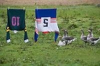 Europe/France/Aquitaine/40/Landes/Montaut:Elevage d'oie à la ferme de la famille Dupouy et linge étendu,maillots de rugby - Cuisine du Gras et rugby deux piliers de la culture gasconne ou de l'esprit du Sud-Ouest