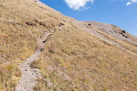 On the trail up Uncompahgre from Matterhorn