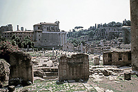 Basilica Aemilia and Temple of Antonius and Faustina, Roman Forum, Rome Italy