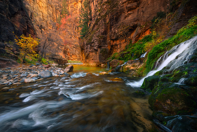 Hiking the Virgin River Narrows from top to bottom was like a hike through a neverending garden of tranquility.