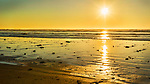 Sunset decorates beach flotsham along Grayland Beach, Washington.  Grayland Beach Stae Park.