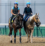 September 1, 2020: Sole Volante exercises as horses prepare for the 2020 Kentucky Derby and Kentucky Oaks at Churchill Downs in Louisville, Kentucky. The race is being run without fans due to the coronavirus pandemic that has gripped the world and nation for much of the year. Scott Serio/Eclipse Sportswire/CSM