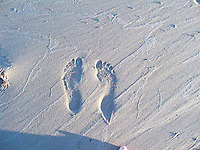 Footprints in the sand on the beach at Slave Lake.
