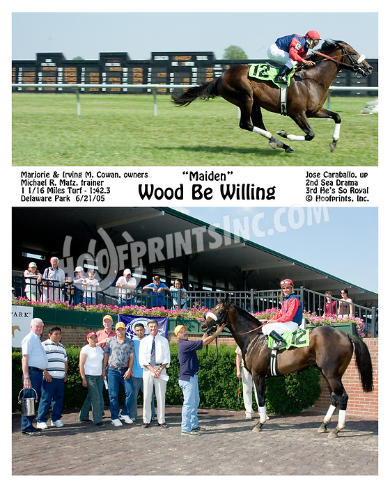 Wood Be Willing winning at Delaware Park on 6/21/05