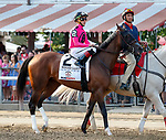 Wonder Gadot in the post parade as Catholic Boy (no. 11) wins the Travers Stakes (Grade 1), Aug. 25, 2018 at the Saratoga Race Course, Saratoga Springs, NY.  Ridden by  Javier Castellano, and trained by Jonathan Thomas, Catholic Boy finished 4 lengths in front of Mendelssohn (No. 8).  (Bruce Dudek/Eclipse Sportswire)