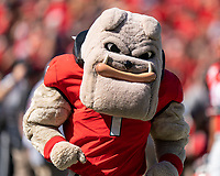 ATHENS, GA - OCTOBER 12: Hairy Dawg during a game between University of South Carolina Gamecocks and University of Georgia Bulldogs at Sanford Stadium on October 12, 2019 in Athens, Georgia.